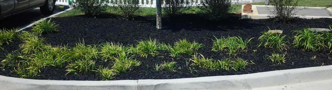 Rubber Landscape Mulch Recycled Tire Mulch Landscaping